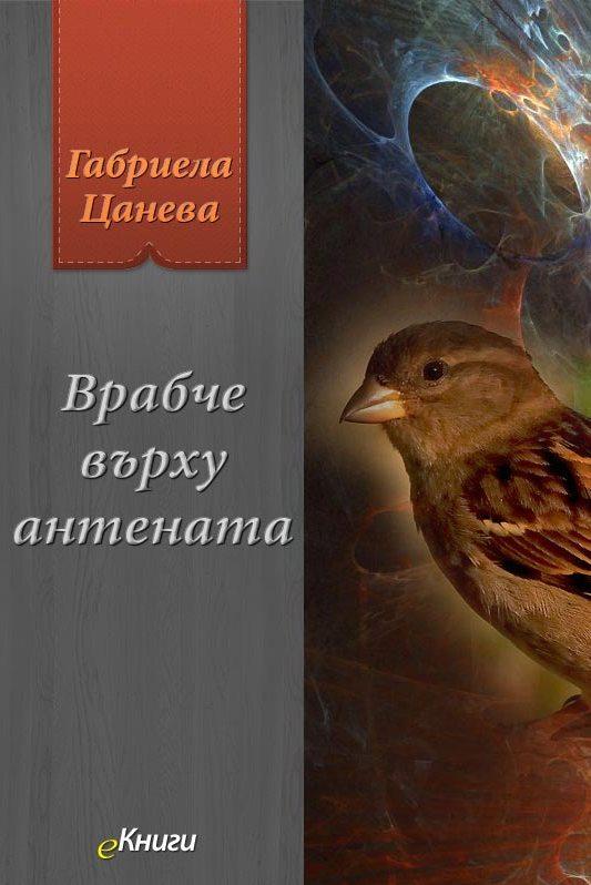 Врабче върху антената от Габриела Цанева
